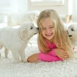 Carpet terminology from Bigelow Flooring in Guelph