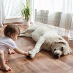 What makes Bigelow Flooring different from other flooring installers